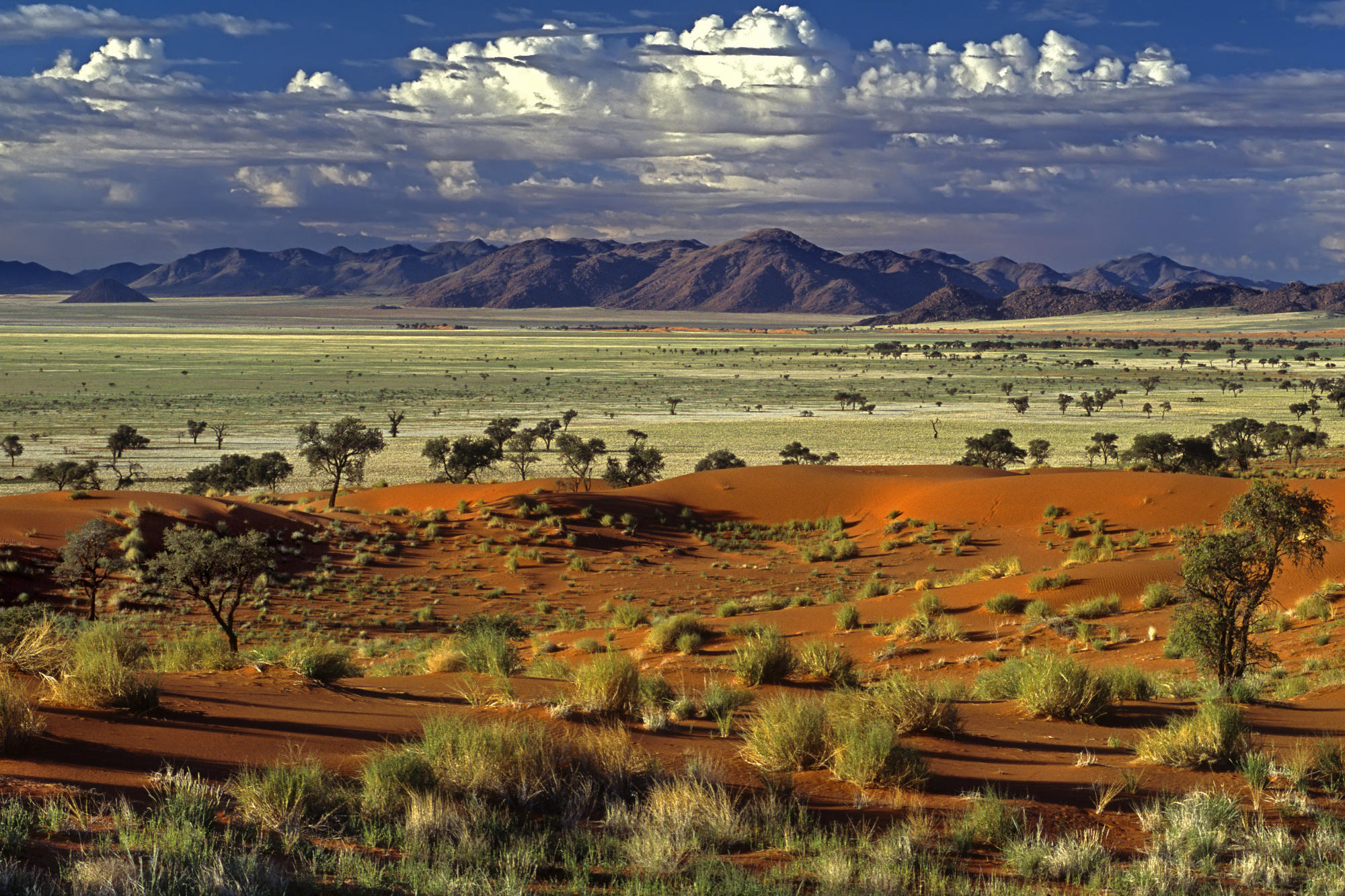 Namibia-wallpapers-7